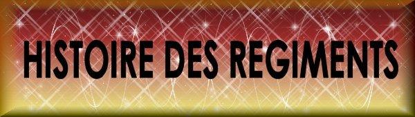 583 régiments français de l'Armée de Terre ? Bouton%20regiment